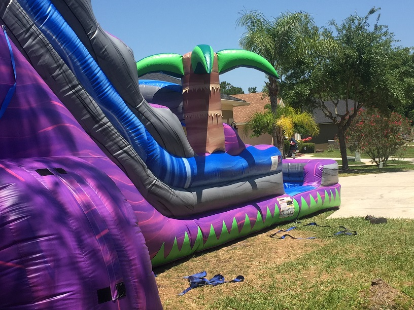 Paradise Water Slide 24 Feet Tall W Giant Pool Water